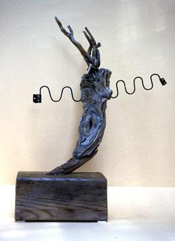 GAIA No.119, 2002